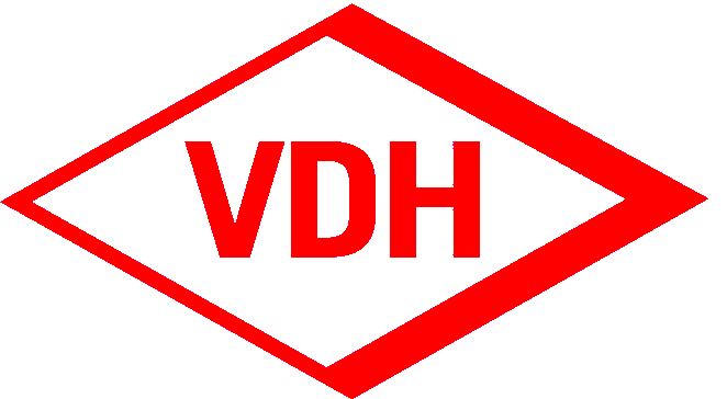 2007 VDH-Raute--transparent